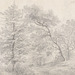 Carl Gustav Carus (German, 1789–1869), <em>Landscape with a Stand of Trees</em>, 1825, graphite on wove paper, 8.6 × 12.8 inches (sheet). Gift of Mr. John D. Reilly '63, 2006.069.028